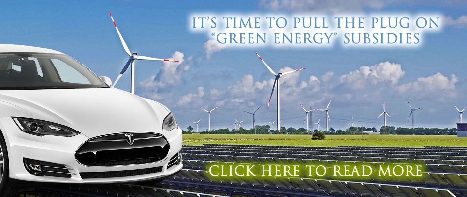 Freedom Party's Plank Against Green Energy Subsidies